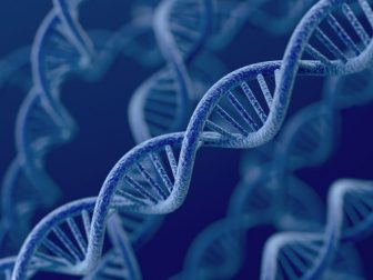 genetics-and-anthropology-336x252